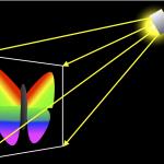 هولوگرام بازتاب (Reflection Hologram)
